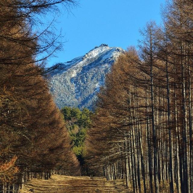 八ヶ岳2015-12b.jpg