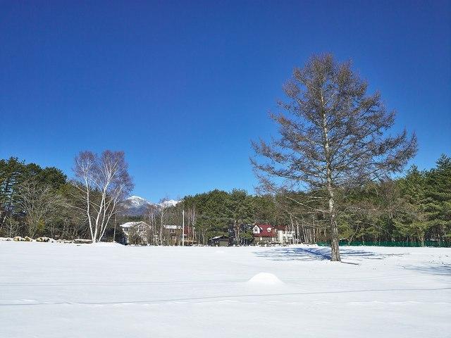 八ヶ岳2016-01e.jpg