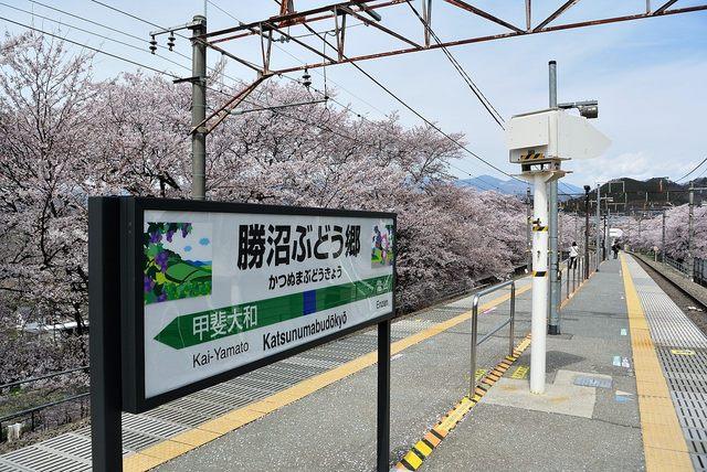勝沼2016-04d.jpg