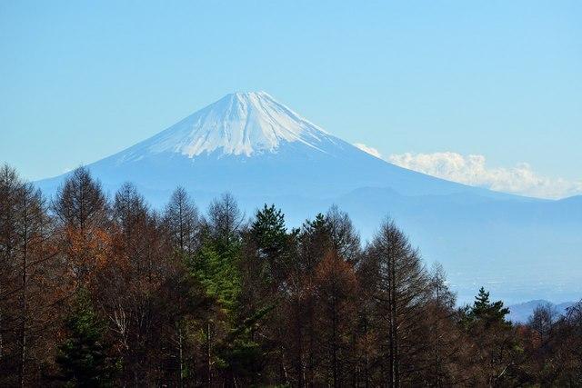 小淵沢2014-11n.jpg