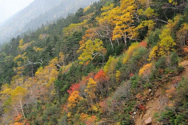 常念岳2014-10f.jpg